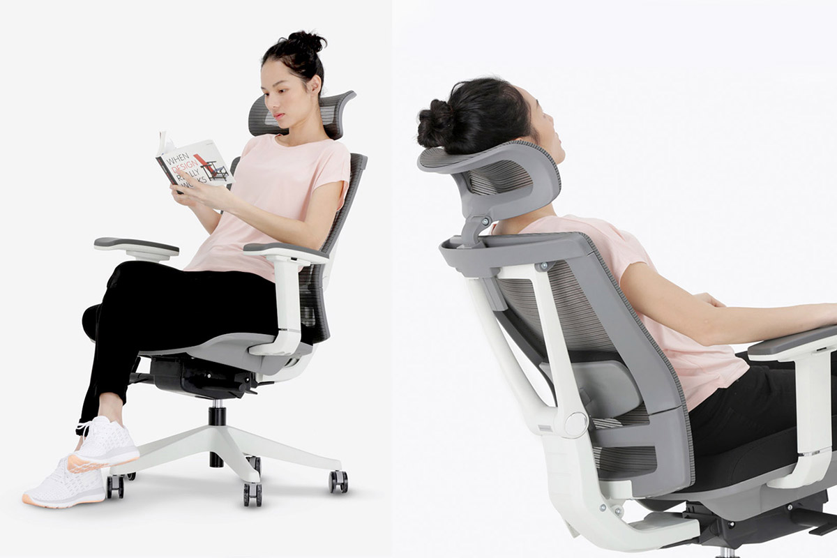 Back and Lumbar Support